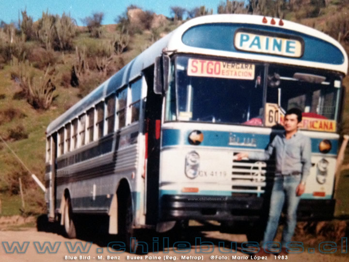 Blue Bird - M. Benz | Buses Paine (Reg. Metrop)