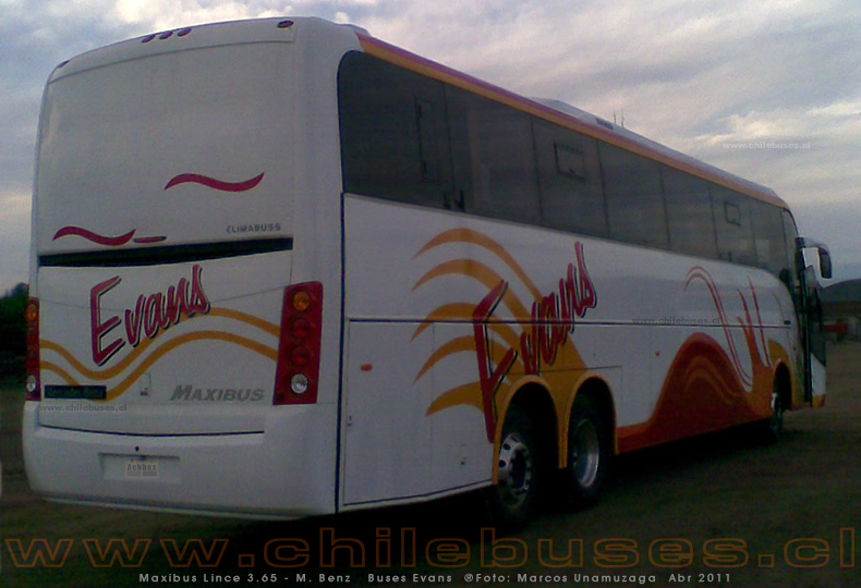 Maxibus Lince 3.65 - M. Benz | Buses Evans