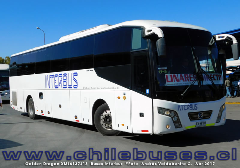 Golden Dragon XML6137J13 | Buses Interbus