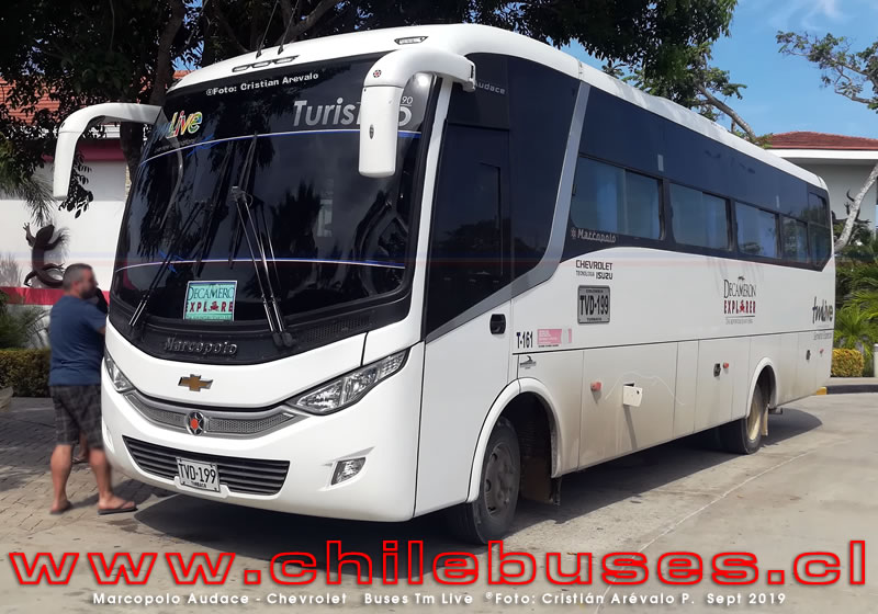 Marcopolo Audace - Chevrolet  |  Buses Tm Live  (Colombia)