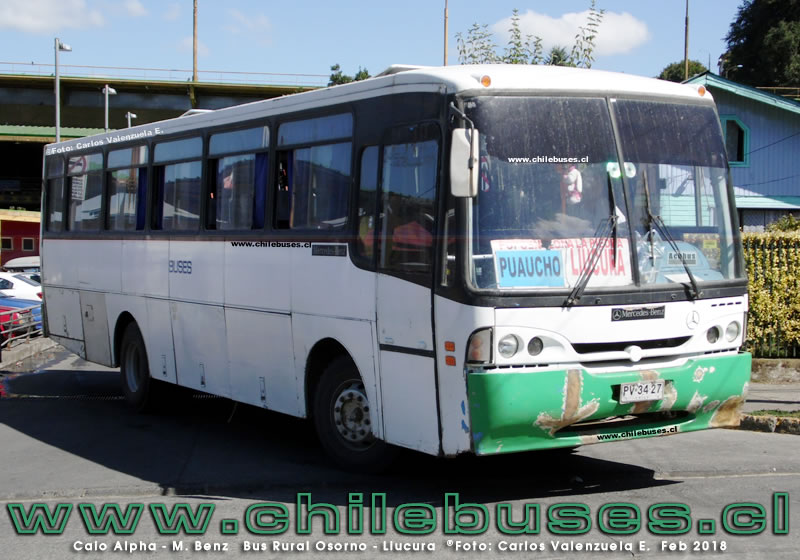 Caio Alpha Intercity - M. Benz | Bus Rural Osorno - Liucura (Region de Los Lagos)