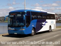 Comil Campione 3.45 - Volkswagen  /  Buses Turismo Absa