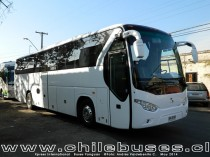 Xpress International | Buses Yanguas