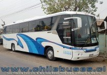 Comil Campione Vision 3.45 - M. Benz | Buses Manzor