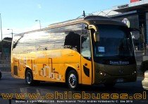Golden Dragon XML6937J55 | Buses Huanca