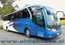Neobus New Road 360 N10 - M. Benz | Buses Turismo Arratia