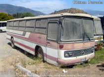 Mercedes Benz O-364 | Bus Particular