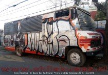 Caio Carolina - M. Benz | Bus Particular