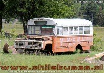 Thomas - Ford | Bus Particular (Region de Los Rios)