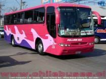 Comil Campione 3.45 - Scania  /  Buses Pullman Bus
