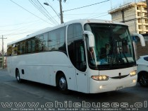 Comil Campione 3.45 - M. Benz | Buses Andrade