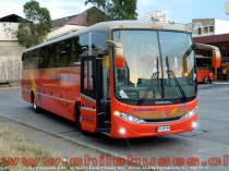 Comil Campione 3.45 - M. Benz | Buses Pullman Bus