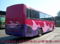Comil Campione 3.45 - M. Benz | Buses Pullman Palmira