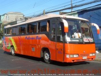 Comil Galleggiante 3.40 - M. Benz | Buses Pullman Bus