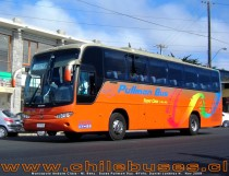 Marcopolo Andare Class 1000 - M. Benz | Buses Pullman Bus