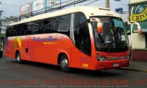 Maxibus Lince 3.45 - M. Benz | Buses Pullman Bus