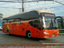 Young Man JNP6126L Starliner | Buses Pullman Bus