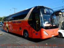 Youngman JNP6120M Starliner | Buses Pullman Bus