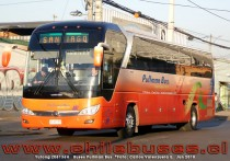 Yutong ZK6136H | Buses Pullman Bus