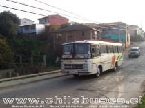 Nielson Diplomata 310 / Buses Sol del Pacifico