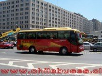 Zhong Tong Bus Catch  /  Buses Palmira