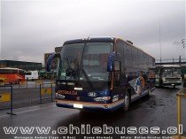 Marcopolo Andare Class - M.Benz / Buses Ahumada