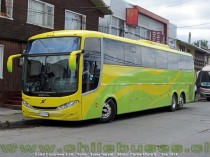 Comil Campione 3.65 - Volvo | Buses Tepual
