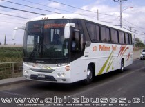 Comil Campione Vision 3.25 - M. Benz | Buses Pullman Yuri's