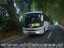 Marcopolo Andare Class 850 - M. Benz  /  Buses Ecobus