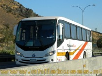 Mascarello Roma 310 - M. Benz | Buses Romanini Bus