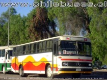 Mercedes Benz O-365  /  Bus Transporte Privado (Copiapó)