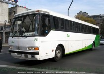 Mercedes Benz O-371 | Bus Particular
