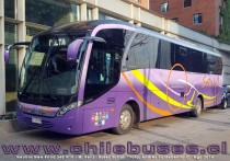 Neobus New Road 340 N10 - M. Benz | Buses Sotrul