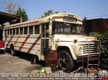 Thomas - Ford  /  Bus de Transporte Privado (Reg. Metrop)