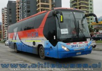 Young Man JNP6120T Starliner | Buses Tandem