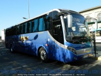 Zhong Tong Creator | Buses Indytur