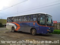 Marcopolo Allegro - M.Benz / Buses Link (Ex Pullman Chile)