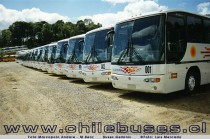 Flota Marcopolo Andare - M.Benz / Buses Geminis