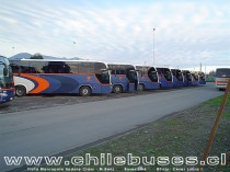 Flota Marcopolo Andare Class - M.Benz / Buses Link (Ex Pullman Chile)