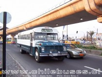 Thomas - Ford / Buses Nuñez