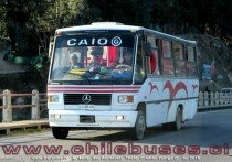 Caio Carolina IV - M. Benz | Bus Particular