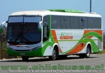 Comil Campione 3.45 - M. Benz | Buses Koely Bus