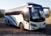 Golden Dragon XML6857J13 | Bus Particular