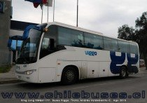 King Long XMQ6117Y | Buses Viggo