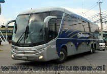 Marcopolo Paradiso 1200 G7 - M. Benz | Buses Pullman Bus Tandem