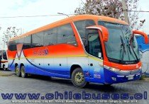 Marcopolo Paradiso 1200 G7 - Volvo | Buses Tandem