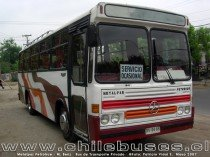 Metalpar Petrohue - M. Benz  /  Bus de Transporte Privado