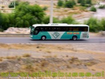 Marcopolo Andare 850 - M. Benz  /  Buses Tur Bus