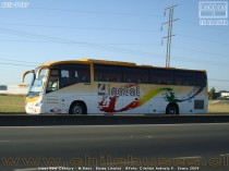 Irizar New Century - M.Benz / Buses Linatal