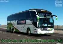Ruta 5 Norte - Neobus New Road 380 N10 - Scania | Buses Cruz del Norte